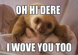 Whispering Sloth Meme - sloth memes funny rape sloth pictures