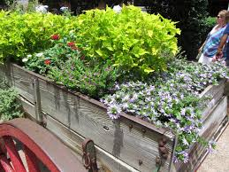 what grows there hugh conlon horticulturalist professor