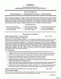 resume summary exles marketing marketing manager resume sle elegant project pics exles