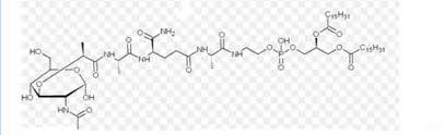 peptide drugs new drug approvals