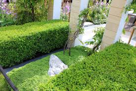 The Smart Garden by Rhs Chelsea Flower Show 2016 The Lg Smart Garden Ced Ltd For