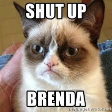 Brenda Memes - shut up brenda grumpy cat meme generator