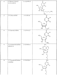 patent ep1212416a2 nucleic acid based modulators of gene