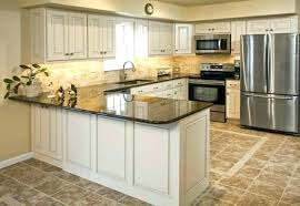 Professionally Painting Kitchen Cabinets Professional Cabinet Paint How To Paint Kitchen Cabinets House