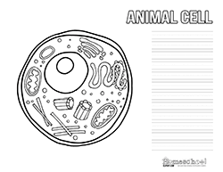 animal cell clipart u0026 worksheets