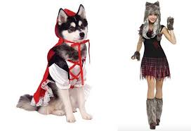 Target Dog Halloween Costumes 10 Halloween Costumes Pets U0026 Owners Ensure Win