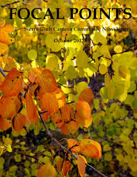 native plant sale muskoka conservancy focal points october 2017 by john nilsson issuu