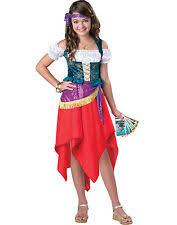 Hunchback Notre Dame Halloween Costume Esmeralda Costume Ebay