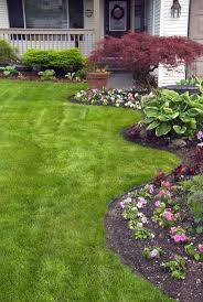 Backyard Ground Cover Ideas by 10 Best Diy Landscape Design For Beginners Images On Pinterest