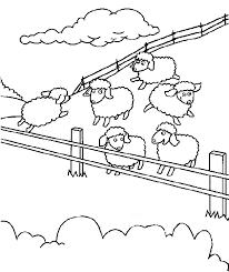 feed sheep coloring