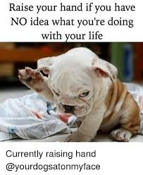 Raising Hand Meme - raise your hand if you have no idea what you re doing with your