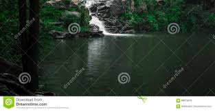 Gardeners Falls Maleny - gardners falls in maleny sunshine coast stock photo image 89674876