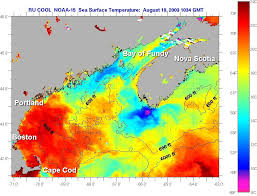 Cape Cod Water Temp - sea surface temperatures u201cwarmest on record u201d u2026but watts up with that