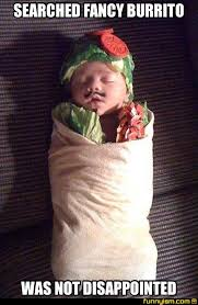 Burrito Meme - searched fancy burrito funny pics funnyism funny pictures