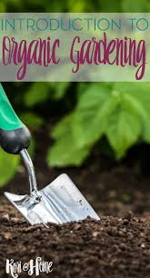 Tips For Planting A Vegetable Garden by The 1389 Best Images About Organic Gardening Tips On Pinterest