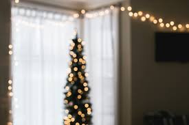 christmas tree flower lights free images light bokeh flower yellow lighting decor