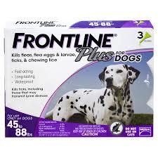 resume writing group coupon frontline plus flea tick drops for dogs 45 88 lb 3 pk meijer com