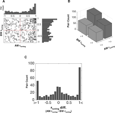 feature selective attention adaptively shifts noise correlations