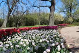 Botanical Garden Cincinnati Cincinnati Blooms Heartlandgardening