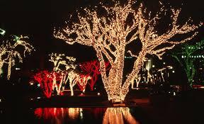 christmas tree lighting blog by christmas light pros nashville tn