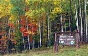 Wisconsin forest images Naasf wisconsin jpg