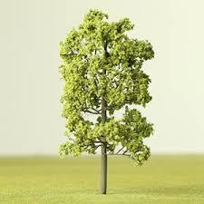 light green deciduous etched tree