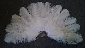 extra large feather fans beauty pc maw