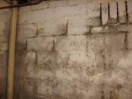 the basement haunted or just creepy and gross flip this house off