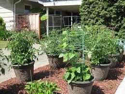 garden ideas for small gardens for beginners 17 wonderful