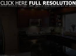 Manufactured Kitchen Cabinets New Kitchen Cabinets For Mobile Homes Tehranway Decoration