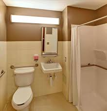 accessible bathroom design design accessible handicap bathroom design with pink earth worthy