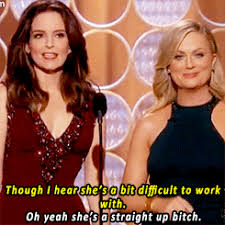 Tina Fey Meme - the 71st annual tina fey and amy poehler s lee daniels the butler