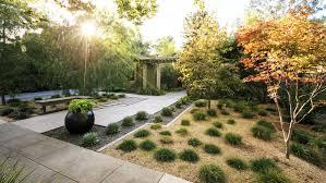 backyard designers backyard design guide sunset magazine