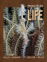 principles of life 1st edition textbook earth u0026 life sciences