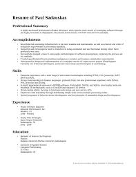 exles of professional summary for resume professional summary exle for resume it exl sevte