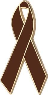 brown ribbon awareness ribbons lapel pins