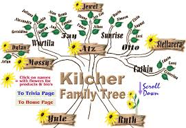kilcher homestead map kilcher family tree images search