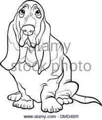 basset hound dog cartoon coloring book stock photo royalty