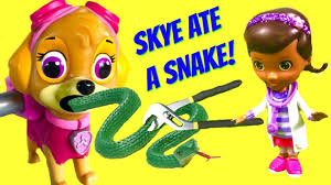paw patrol skye swallows eats snake cookout