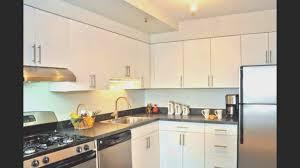 kitchen best kitchen cabinets door home design popular excellent