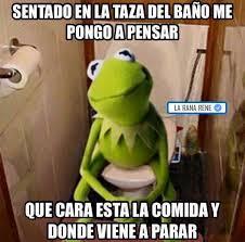 Memes Rana Rene - estos son grandes momentos de la rana ren礬 que te har磧n decir que