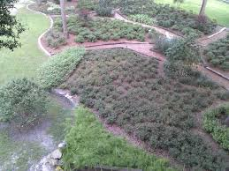 Barnhill Rock Garden Barnhill Landscaping Levy Landscaping