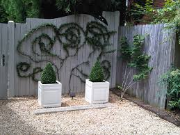 this is a cool idea use either wire or tree branches as a trellis