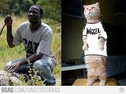 Nigger Memes - memes blog cat nigger