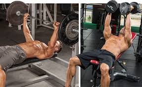 Bench Press For Beginners Beginner U0027s Guide To Resistance Training