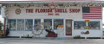 where to buy seashells florida shell shop in treasure island buy discount seashells