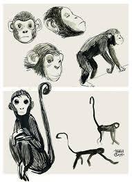 octopus vs monkey on behance