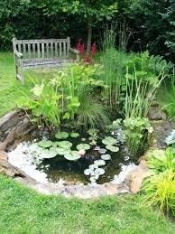 Small Garden Ponds Ideas Small Landscape Pond Ideas Small Yet Adorable Backyard Pond Ideas