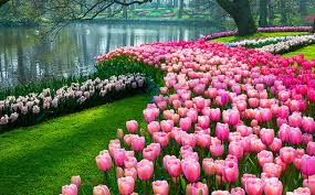 images of beautiful gardens 6 of the world s most beautiful gardens