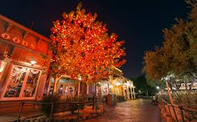 Pretty Lights Halloween by Disney Photoblography The Halloween Tree Iii